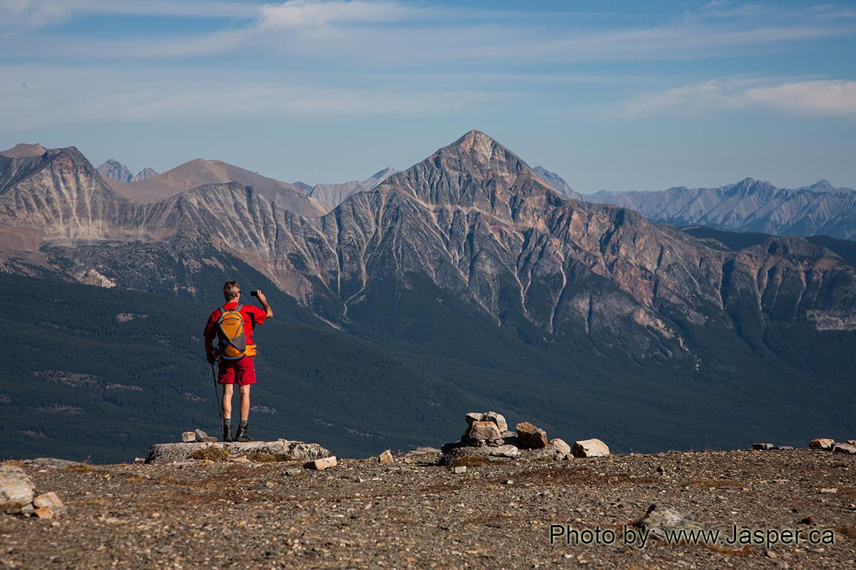 Indian Ridge Jasper
